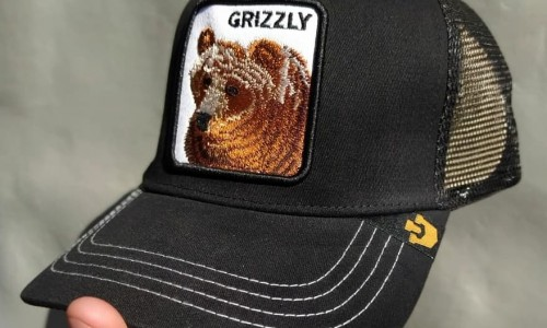 gorra goorin bross oso